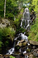 Cascade du Howald (Laura Carrier) Tags: cascade du howald col kreuzweg landlau andlau basrhin bas rhin alsace waterfall nikon d7000 france dalsace photographie photo photography