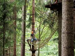P8234085e (topzdk) Tags: treeclimbing summer 2016 czechrepublic ski slope lanovy park