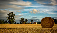 Harvest in Worcestershire - Explore 280816 (cliveg004) Tags: harvest pirton worcestershire straw bales roundbales evening countryside rural