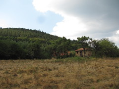 / The last house (Deian Vladov) Tags:                   bulgria blcs bulgarien bulgaria bulgarie balkans balkan europe europa forest summer clouds nuages ciel sky trees arbres mountain montagne drygrass golemaplanina staraplanina leskovdol village old vieille abandoned abandonne fort herbesche t