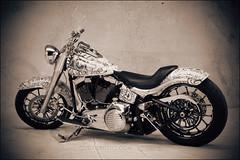 bikes-2009world-102-d-l