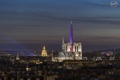 Tour eiffel et notre dame de Paris (apparencephotos) Tags: tour eiffel toureiffel notredamedeparis paris france bleu blanc rouge eglise invalides