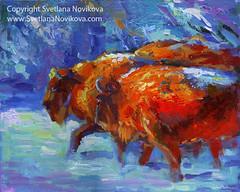 Bison Buffalo painting by Svetlana Novikova (www.SvetlanaNovikova.com) Tags: snow painting buffalo colorful acrylic impressionism russian svetlana textured bisons novikova buffaloart bison1
