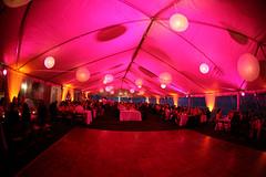 Paper Lanterns - Pink Lighting - Amber/Champagne Lighting - Tent Lighting