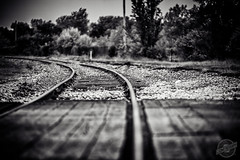 Struggle to Stay on Track (CJ Schmit) Tags: wood railroad trees usa monochrome wisconsin canon rocks crossing unitedstates traintracks tracks milwaukee southside toned titanium 5dmarkii canon5dmarkii tamron70200mmf28dildifmacroaf cjschmit wwwcjschmitcom niksilverefex2 cjschmitphotography
