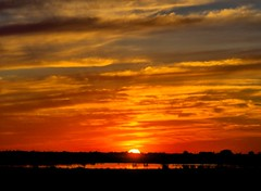 Katy Savanna Sunset (Tom Haymes) Tags: sunset orange clouds texas katy dusk silhouettes watershed prairie wetland katytexas katyprairie katyprairieconservancy