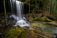 Wilderness Escape (outsideshot) Tags: trees nature outdoors waterfall moss rocks alabama scenic alabamathebeautiful mossyrocks outsideshot napg bankheadnationalforest sipseywildernessarea tokina111628 ilovethesmellofawaterfallinthemorning