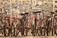 Amsterdam Bike Symphony (Allard Schager) Tags: street urban holland netherlands dutch amsterdam nikon dof bokeh group january nederland bikes bicycles symphony clutter fietsen gettyimages lineup grouped capitalcity 2013 d700 nikond700 nikonfx allardone allard1 nikkor70200mmf28vrii fullframepower