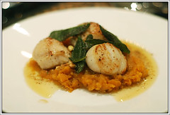 Scallops with Butternut Pure and Sage (molinette) Tags: fish recipe starter scallops sage butter seafood butternut pinenuts crumbsfordinner