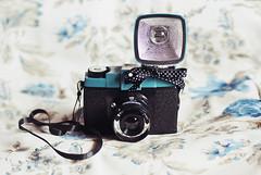 Diana  (Crissie Gmez) Tags: flowers canon vintage soft colours lace 14 diana mm 50