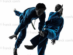 karate vietvodao martial arts man woman couple silhouette (Franck Camhi) Tags: shadow 2 two people woman white man male sports girl silhouette female portraits cutout pose asian person one 1 vietnamese exercise young couples martialarts falling indoors karate whitebackground kungfu uniforms studioshot posture fighting adults selfdefense twopeople defense isolated position caucasian fightingstance exercising vietvodao combativesport