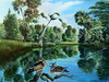 faka2 (floridaartist) Tags: nature woodducks freshwaterponds freshwatermarshes flalandscapes danielbutlerart
