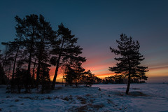 First colours (- David Olsson -) Tags: morning trees winter snow cold nature sunrise landscape dawn early nikon sweden outdoor freezing vivid karlstad colourful february fx firs d800 landskap vrmland 1635 1635mm skutberget 2013 davidolsson 1635vr