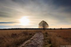 Road to... (Kersten Jeroen) Tags: canon 16mm kampina zonsopkomst 600d