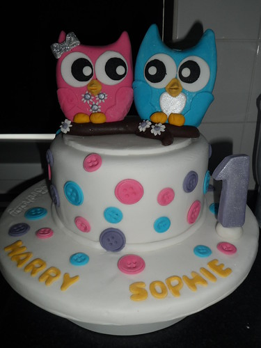 Twins 1st birthday cake with a fondant twin owl cake topper a