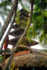 Out of the Jungle (Gary Burke.) Tags: show travel trees vacation tree tower canon palms eos rebel pagoda orlando florida disney palmtrees disneyworld tropical fl wdw dslr waltdisneyworld mk magickingdom attraction adventureland polynesian tikiroom enchantedtikiroom garyburke wedenterprises klingon65 t1i canoneosrebelt1i