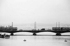 (Hugo Chinaglia) Tags: street bridge bw white mountain black rio branco river switzerland boat nikon europa europe barco traffic swiss zurich tram pb preto ponte suia zurique rua transito trem montanha bonde d90 18105mm