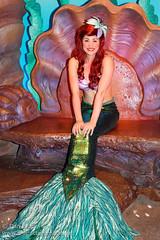 Ariel (Ariel's Grotto)