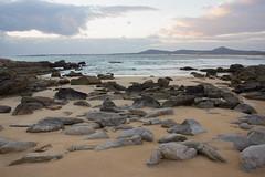 Corrubedo (peparonia) Tags: espaa naturaleza mar playa galicia piedras orilla parquenatural corrubedo