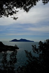 capri in spring (eleonora.mauro) Tags: blue sea sky italy sun clouds capri