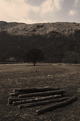 Lake District #2 (Emmett Hunt) Tags: field sepia landscape lakedistrict 18105mm nikond300s