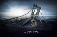 10.04.13: Earth is a memory worth fighting for. OBLIVION (Wang Wang 22) Tags: dog cute movie nikon kino pug plush hund 365 nici pictureoftheday oblivion mops d90 fotodestages wangwang wangwang22