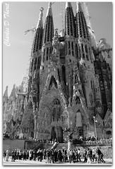 La Sagrada Família (ctofcsco) Tags: 28300mm 5d barcelona canon explore familia sagrada spain superzoom rememberthatmomentlevel1 black white gaudi landscape cityscape seascape scape landscapes ef28300mm f3556l is usm ef28300mmf3556lisusm telephoto classic eos5d eos5dclassic 5dclassic 5dmark1 5dmarki monochrome blackandwhite bw renown landmark special famous historic best wonderful perfect fabulous great photo pic picture image photograph