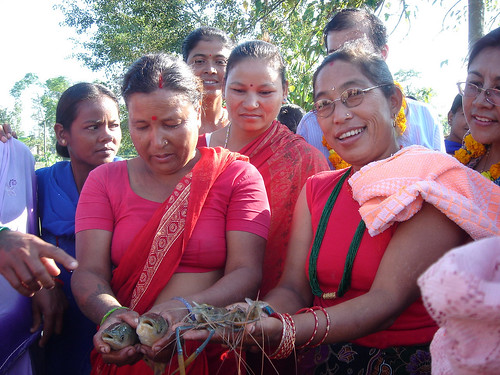 Women farmers in Chitwan Nepal showing fish and freshwater prawn harvested from their ponds. Photo by Jharendu Pant, 2006.