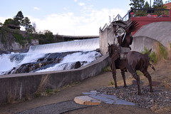 Native on Horseback with salmon (hansntareen) Tags: spokane sculpture riverpark 2016 spokanefalls metalhorse native horseback eaglefeather salmon river salmonrun