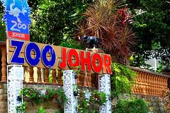 Zoo Johor (phalinn) Tags: zoo johor bahru skudai malaysia asia animal binatang haiwan mammals family kids people outdoor travel holiday tour relax cuti jalan explore sky canon eos 7d zoom lion tiger monkey camel hippopotamus deer birds flora fauna 1mdb jdt tmj crocodile photography