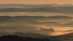 Morning waves (<-Y->) Tags: orange tree fog forest sunrise landscape mystic tjkp 650d magicdrainpipe ngrdcounty
