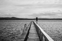 Monochrome Waterscape at Long Jetty (Merrillie) Tags: natural nikon nature australia d5500 nswcentralcoast newsouthwales nsw centralcoastnsw wharf water photography landscape outdoors waterscape jetty centralcoast longjetty outdoor tuggerahlake