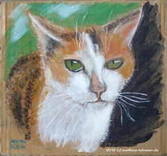 My Cat Rosi (Matthias Talmeier) Tags: rosi katzen cats acryl portrait