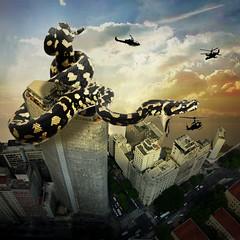 Seven of September (jaci XIII) Tags: cidade prdio edifcio cobra animal terror helicptero city building pet helicopter horror