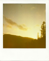 View from the parking lot (~KIM~) Tags: pnw impossibleproject sunset trees natureycrap polaroid