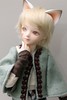 Patch - Bluefairy Tommy (Damasquerade) Tags: bjd bluefairy tommy tinyfairy cat ears boy dandy sky brown msd cute ns catboy dollmoresmilemushroomset