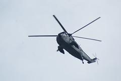 Hubschrauber ( Percy Germany  ) Tags: hubschrauber heli army bundeswehr percygermany hansesail2016