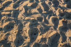 Tracks (Lucien Schilling) Tags: cadzandbad beach cadzand zeeland netherlands nl