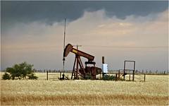 Pumpjack north of Newcastle, Texas (Small Creatures) Tags: texas youngcounty newcastle pumpjack oilfield nikond40 nikon nikon18200mm thunderstorm beampump samsonpost