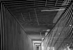 linear (Bernd Kretzer) Tags: installation verkehrsmuseum nrnberg abstrakt abstract schwarzweiss blackwhite nikon afs dx zoomnikkor 1855mm 13556g