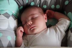 snug as a bug (StoraDan) Tags: fs160918 stamning fotosondag baby sleeping