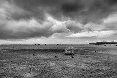 Creepy birds (westindiangal) Tags: a7ll allrightsreserved sony jeanchristopher europe travel travelphotography blackandwhite monochrome outdoor clouds sky stonehenge could