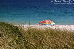 Crystal Crescent Beach 2 (sminky_pinky100 (In and Out)) Tags: crystalcrescentbeach novascotia canada atlantic sandy ocean sea coastal scenic landscape travel tourism omot cans2s beachumbrella