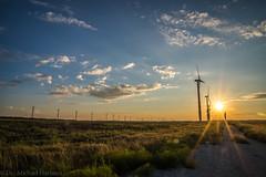 West Texas Morning (2 of 40) (mharbour11) Tags: wildcats elk purple sunrise westtexas texas sky windturbines windmill sun silhouettefire silhouette