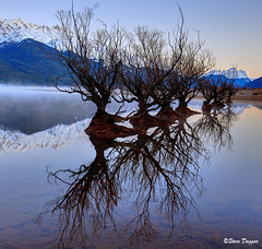 0S1A2681enthuse (Steve Daggar) Tags: glenorchy newzealand sunrise landscape mountains snowcappedmountains reflections reflection lake queenstown