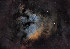 NGC7822 (Explored) (Manifest Stephanie) Tags: ngc7822 ngc 7822 nebula star forming region astrophotography night sky urban narrowband qsi tele vue astrodon astrometrydotnet:id=nova1731657 astrometrydotnet:status=solved