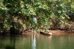 DSC02946 (Capt Kodak) Tags: autumn chattahoocheerivernationalrecreationarea fall medlockbridgepark nationalparkservice pee wetrock