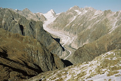 - (meubzh) Tags: fiesch snake gletscher november analog