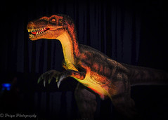 T-Rex Dino (priyasharma24) Tags: dino dinosaur exhibit lowlight scary fun
