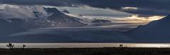 Iceland - Vatnajkull Glacier (Jan Hoogendoorn) Tags: iceland ijsland vatnajkull glacier gletsjer